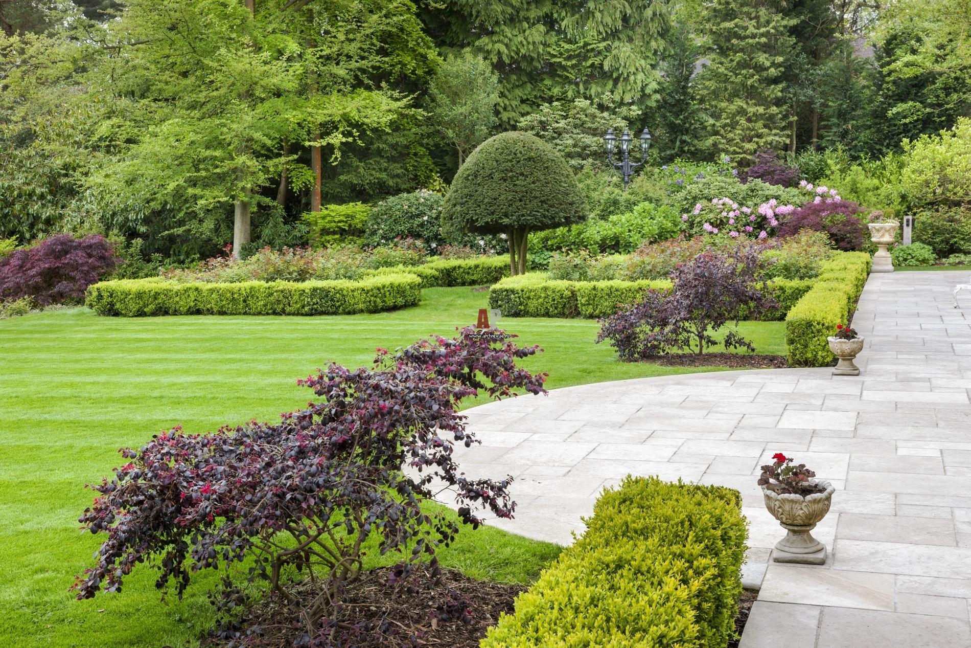 дизайнерский ландшафт сада фото оранжевого серым очень