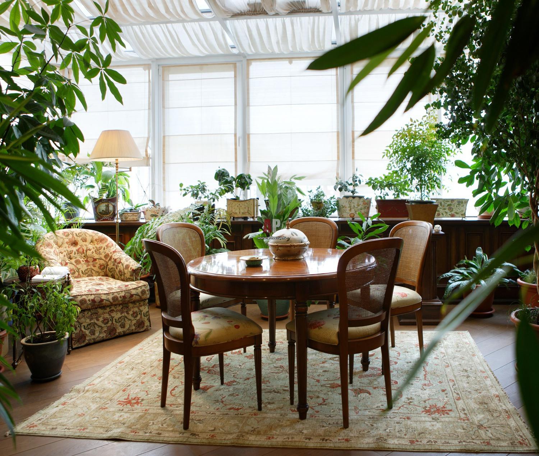 Фото интерьера зимнего сада